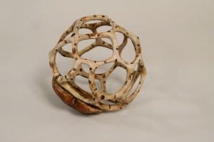 Basket Fungus - Wim Nijmeijer