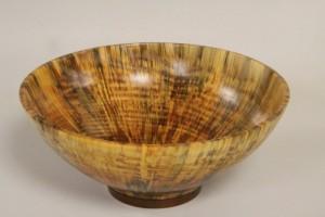 Norfolk Pine - Lindsay Amies